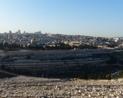 Jerusalem_MtofOlives (17)